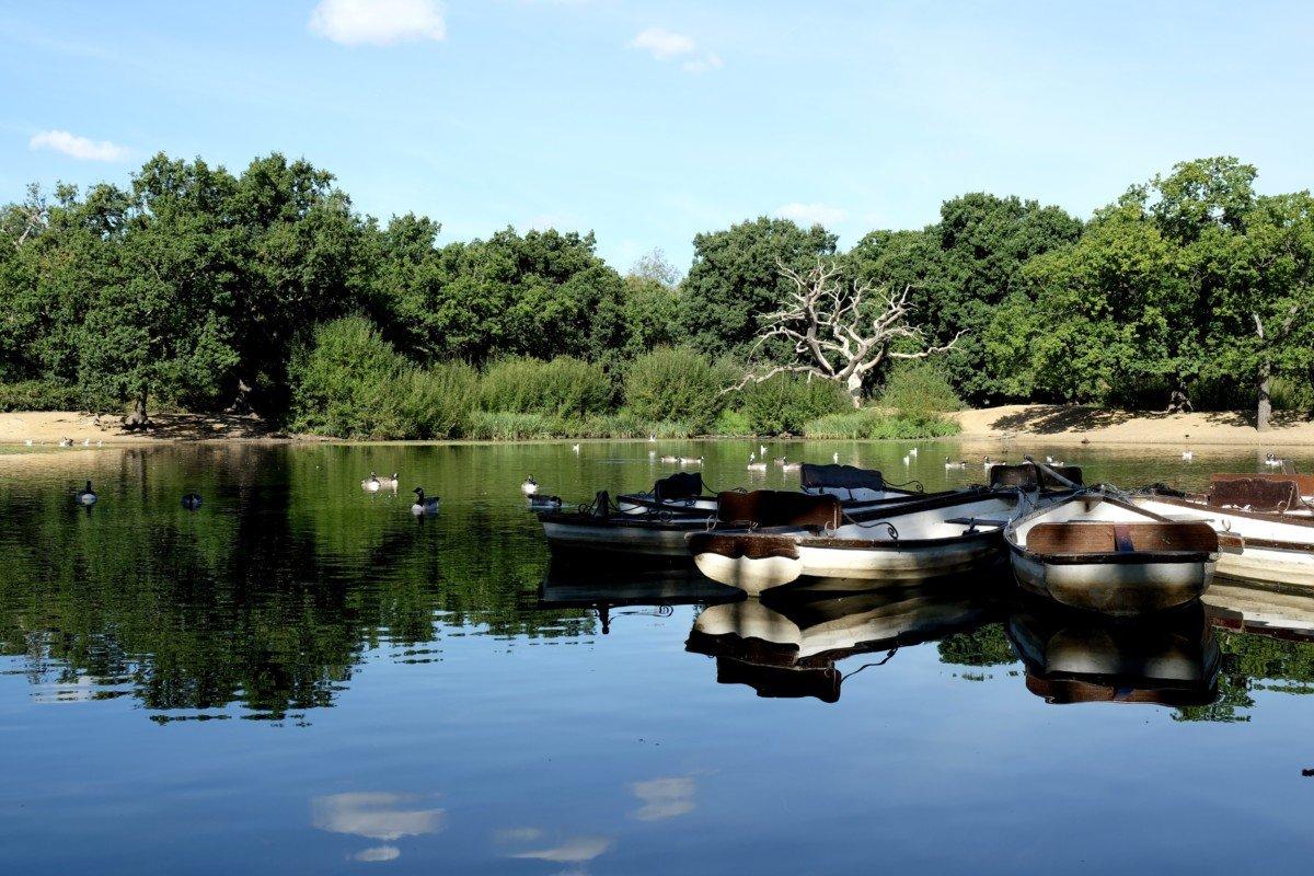 My Sunday Photo Hollow Ponds
