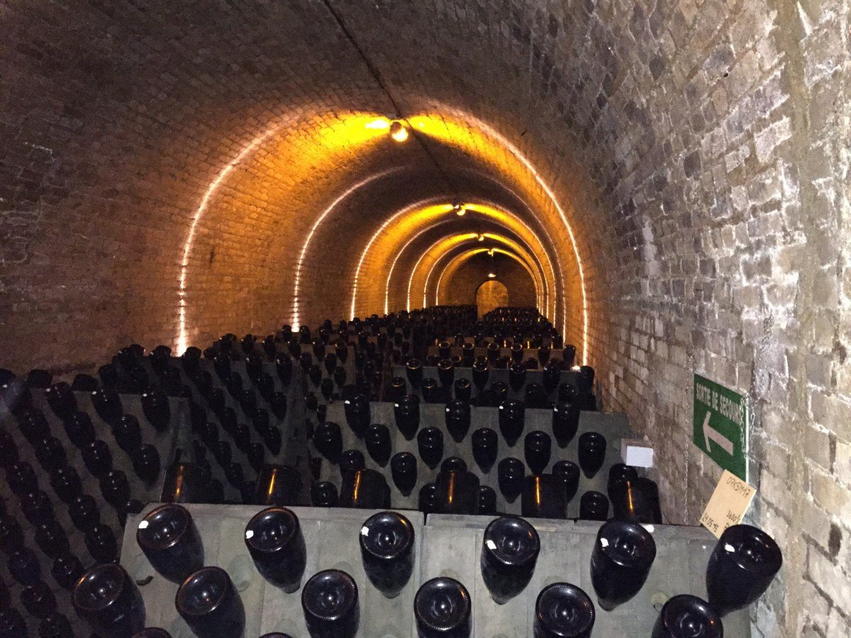 Krug champagne tour cellars