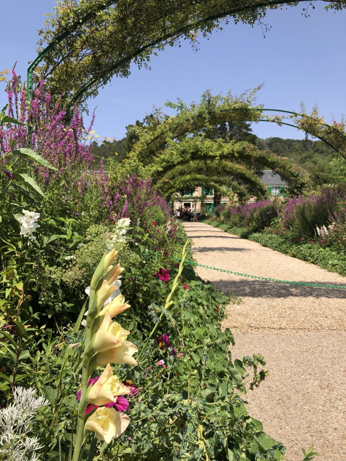 The huge pergola that lines the front of Claude Monet's home