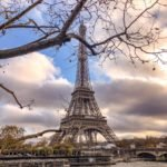 The Eiffel Tower in Paris from behind a tree